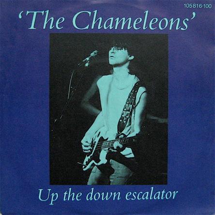 Chameleons 45-a