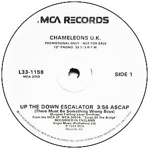 Chameleons 45-c