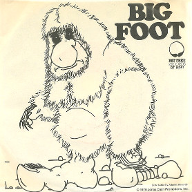 Track Recorders - Big Foot 45-aa